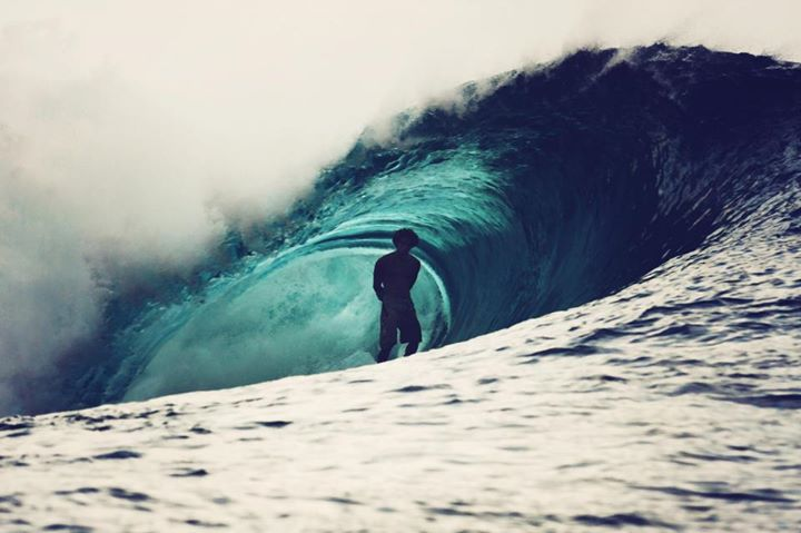 stanley-surfista